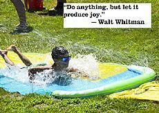 """Do anything, but let it produce joy."" -Walt Whitman"