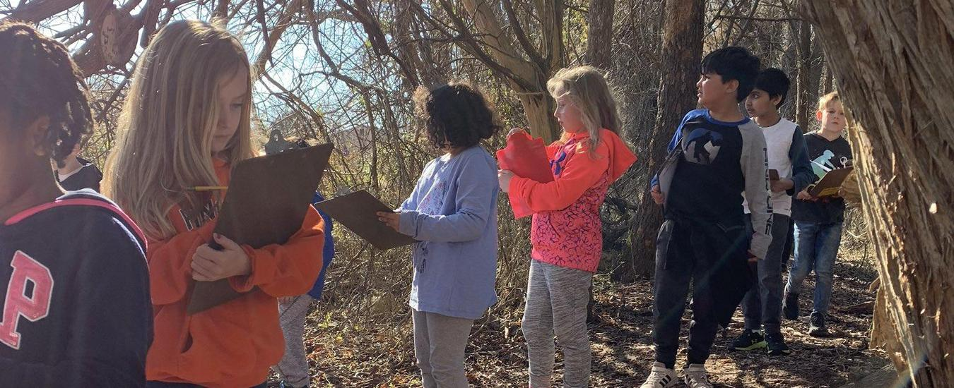 Investigating the Nature Trail