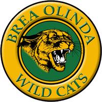 BOHS Wildcats