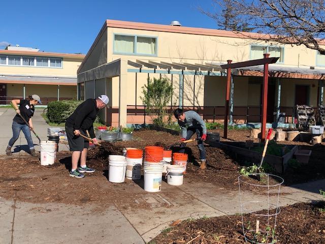 Garden work taking place