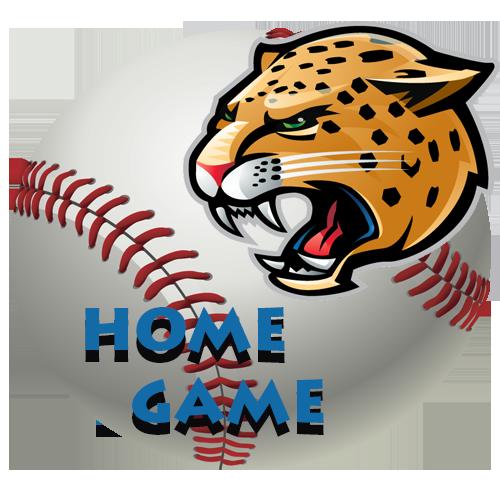 Baseball Home Game