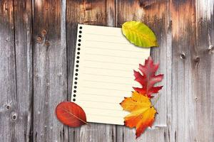 autumn-1649207_640.jpg