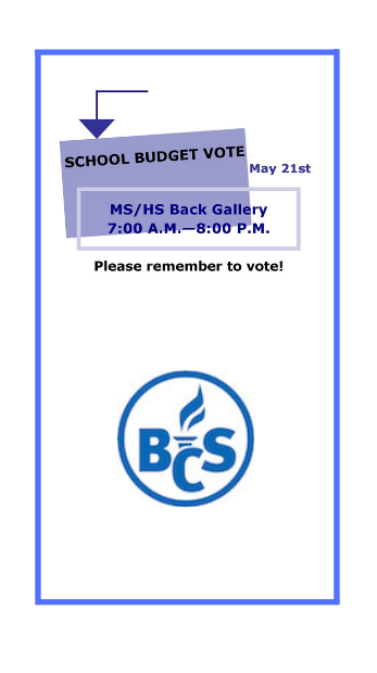 picture of budget vote poster