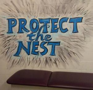 Protect the Nest.jpg