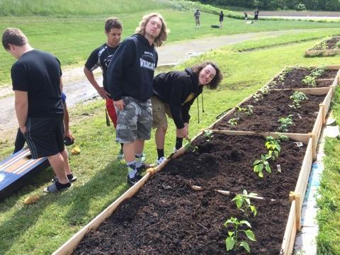 student planting garden