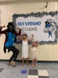 Greyhound strong