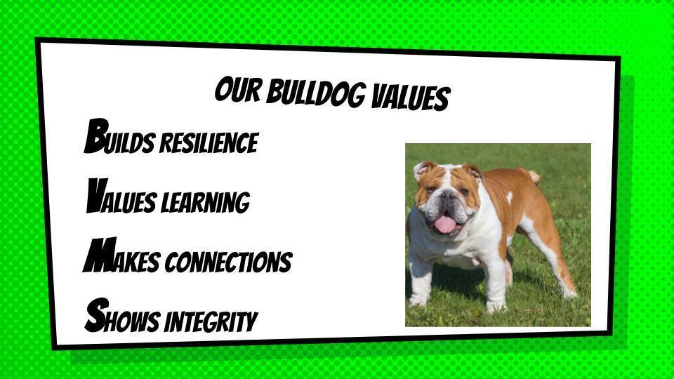 Bulldog Values