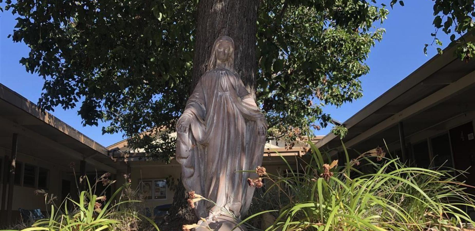 Mother Mary statue in our Courtyard.