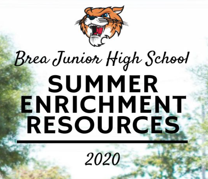 Summer Enrichment Resources Text