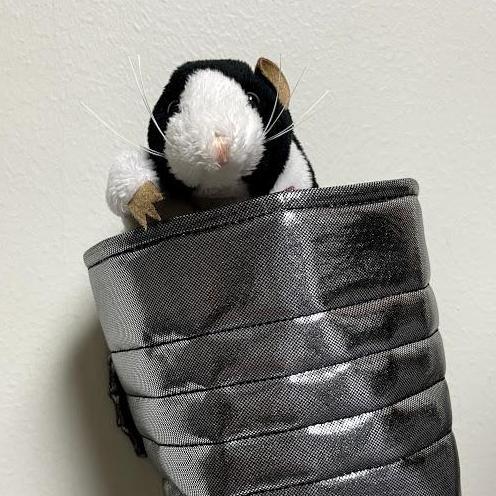 Canuel Rat's Profile Photo