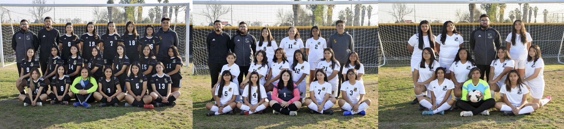 Girls Soccer 2019-2020