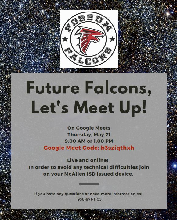 Future Falcons.png