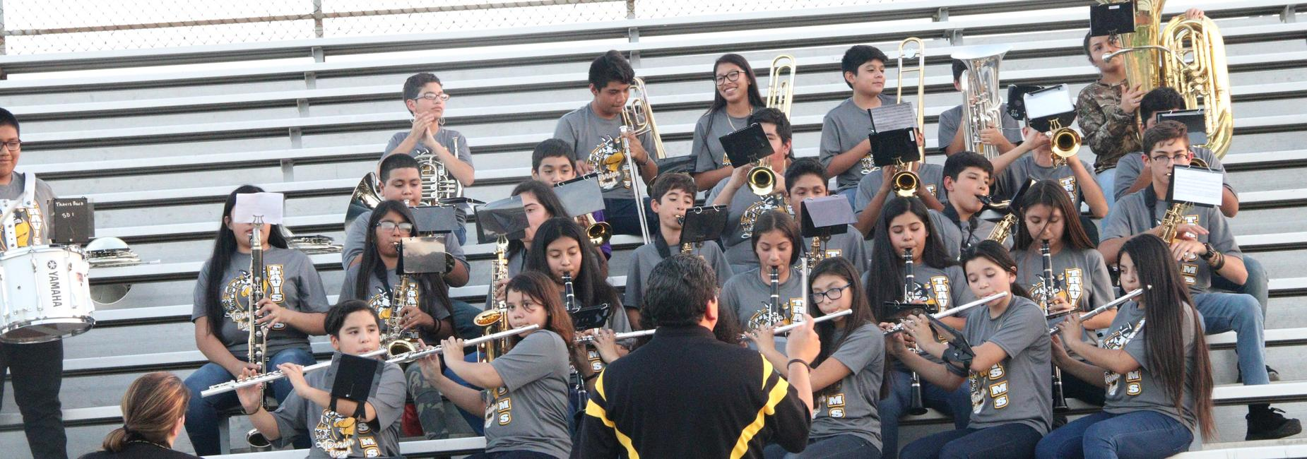 TMS Band