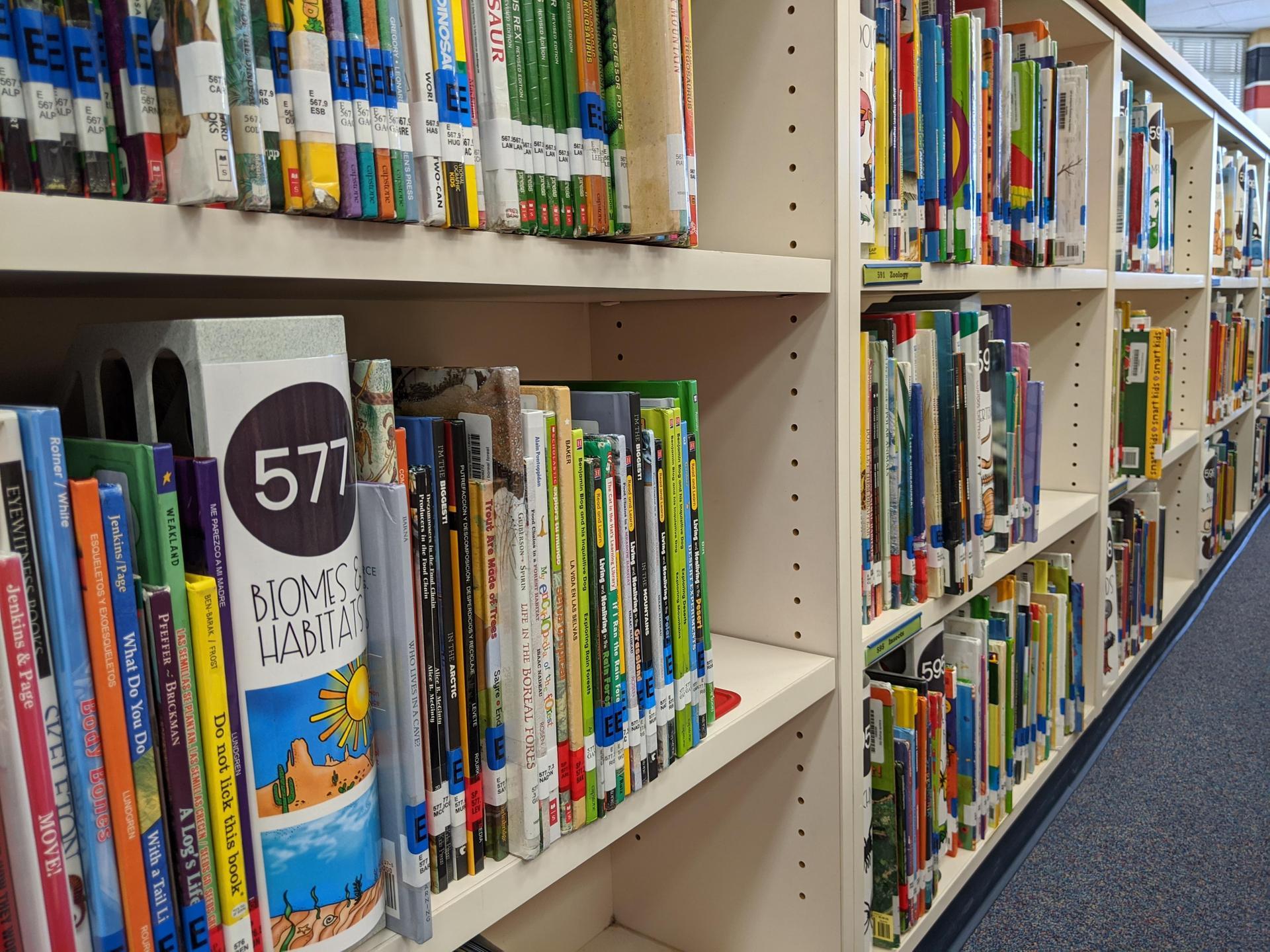Wedge Book Shelves
