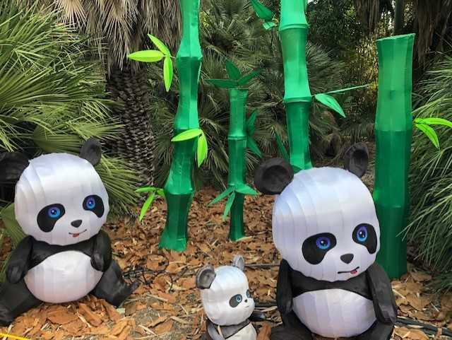 Panda for the Lantern Festival at the LA Arboretum