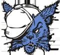DMS Bearkit logo