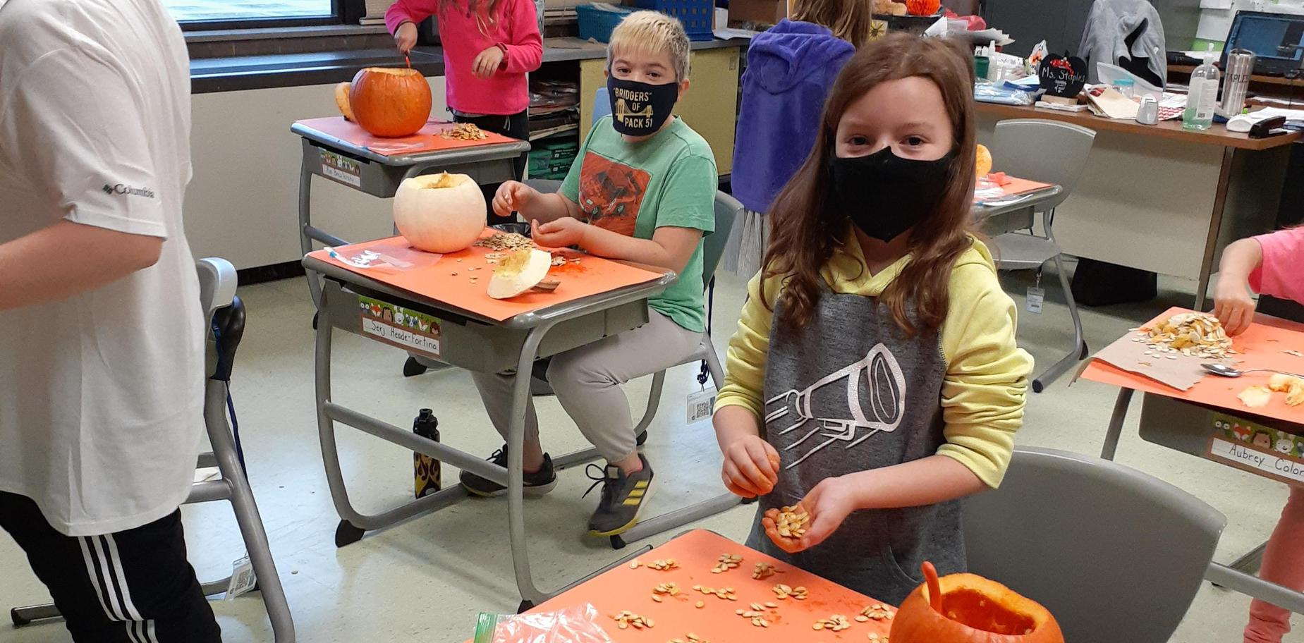 students counting pumpkin seeds