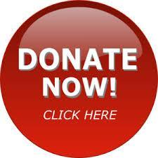 Donate Button - FAMU Donation Page