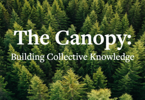 canopy 2.PNG