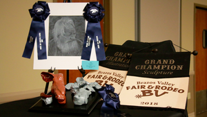 Grand Champion Sculpture & Illustration