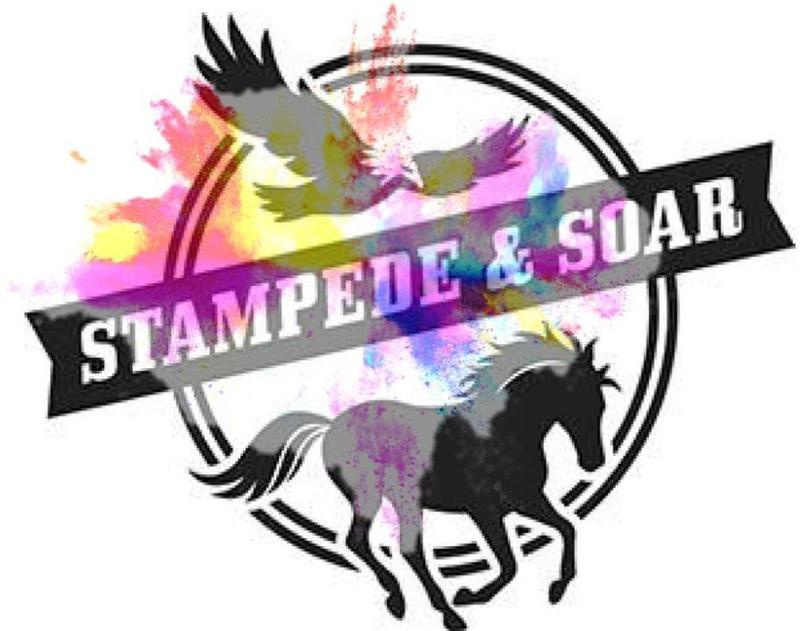 Stampede & Soar Color Run Featured Photo