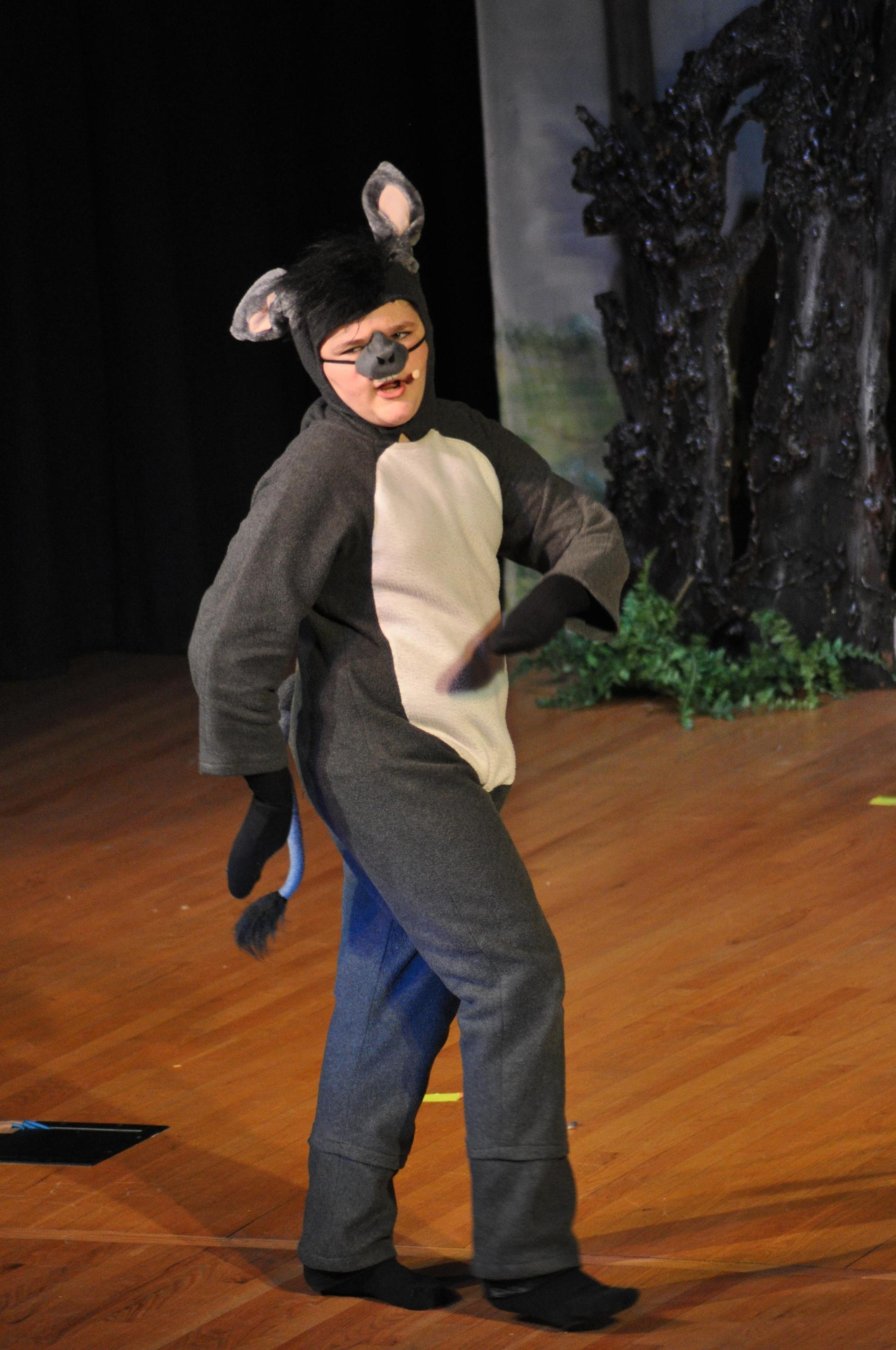 Donkey in Children's Theater's Production of 'Shrek The Musical Jr.' in January 2018