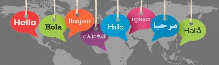 CISD World Language Banner