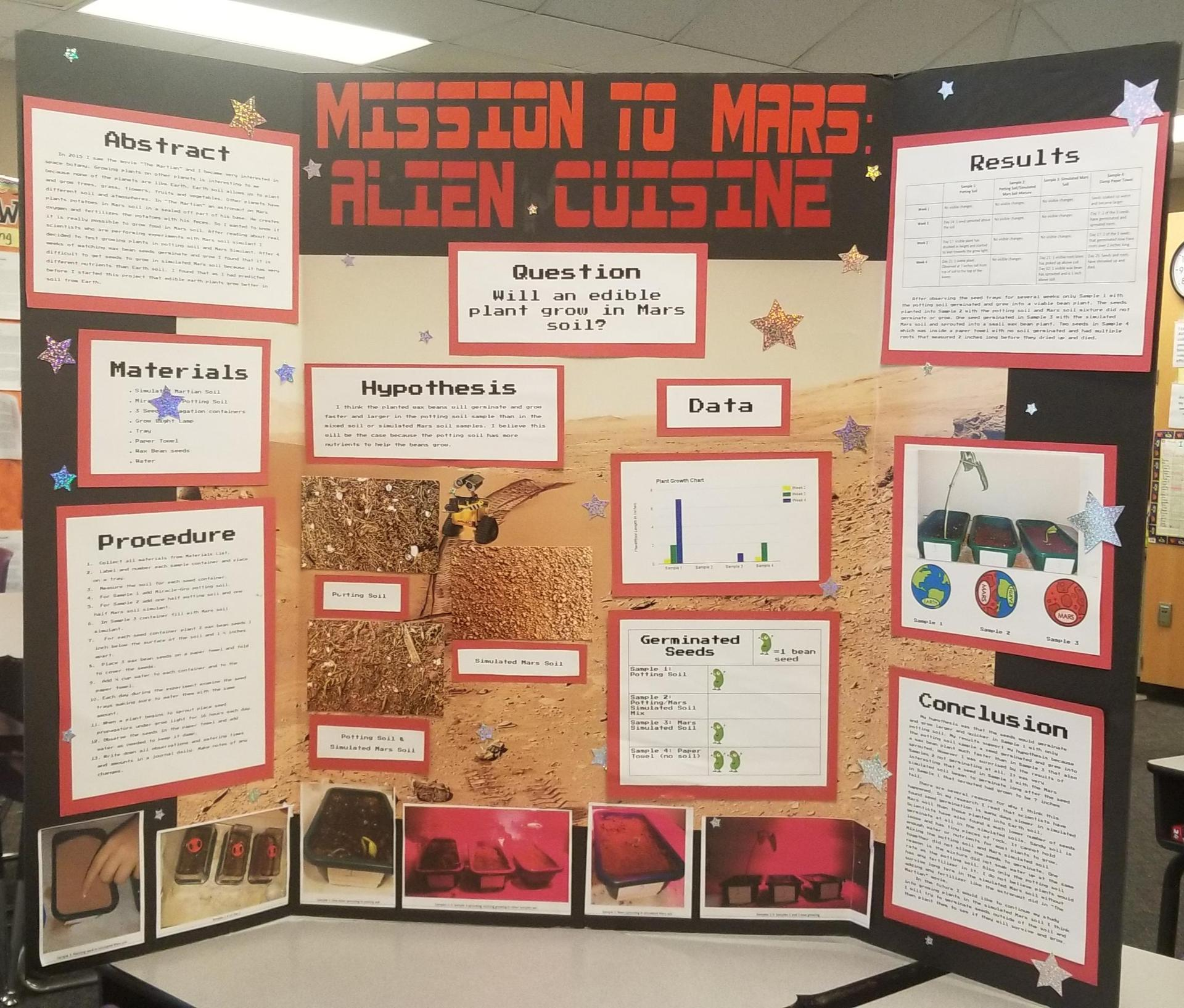 Science Project Example