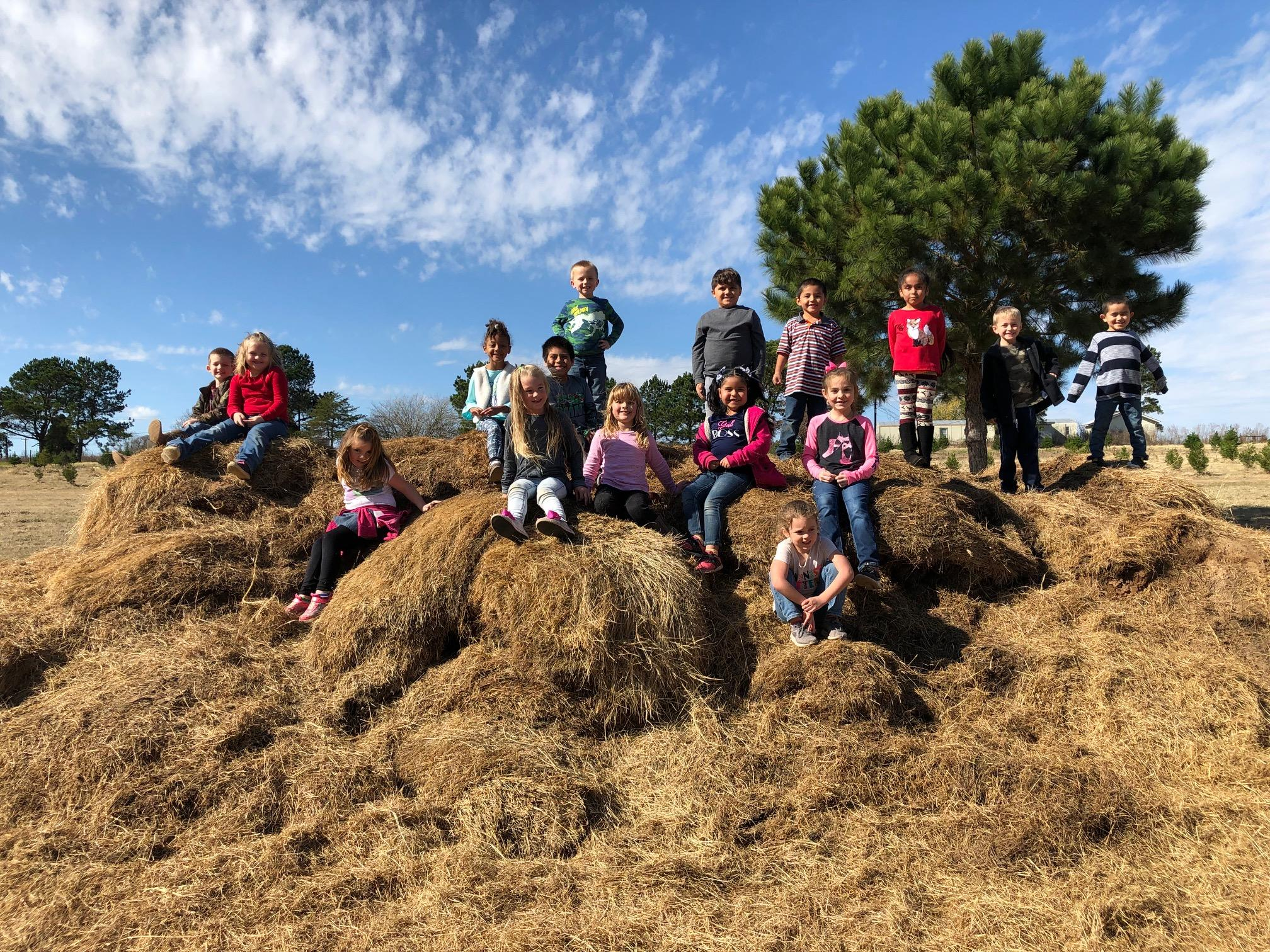 students sitting on hay bales