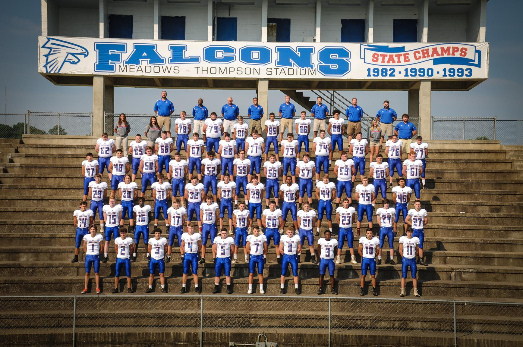 2018 LCHS Falcons