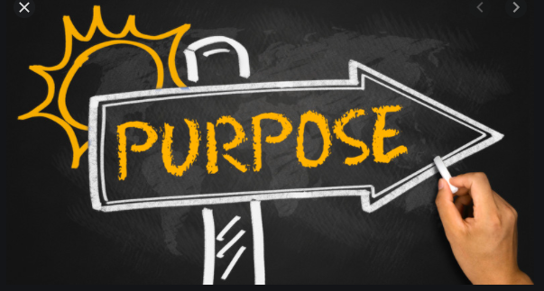 January- Purpose Award Winners Thumbnail Image