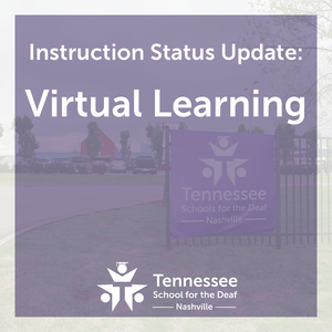 TSDN will continue Virtual Learning 2/16