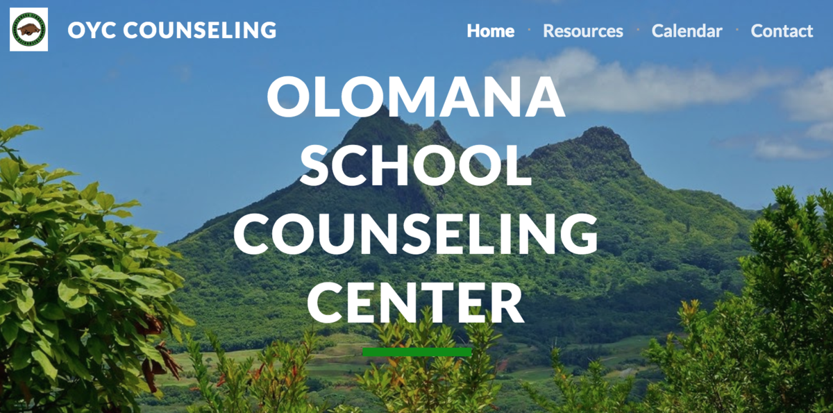 Counseling Website