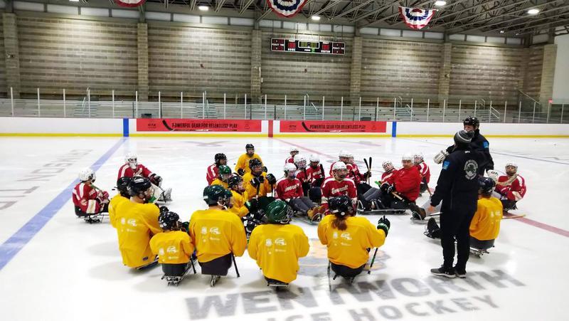 Sled hockey players gathered at center ice