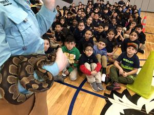 large snake being held by trainer as the kids watch