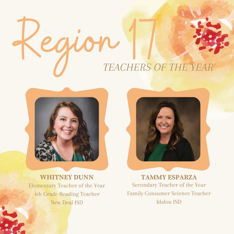 NDES Teacher named Region 17 Elementary Teacher of the Year Featured Photo