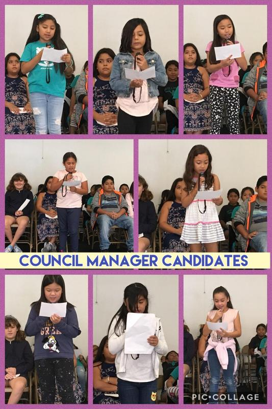 Candidates for Council Manager