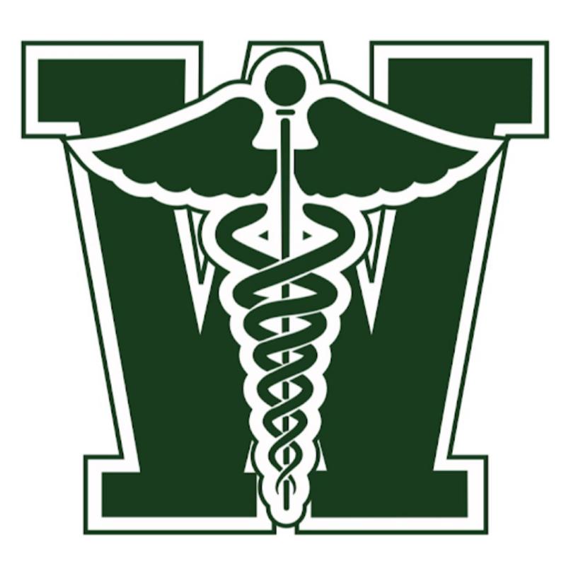 WISD sports medicine logo