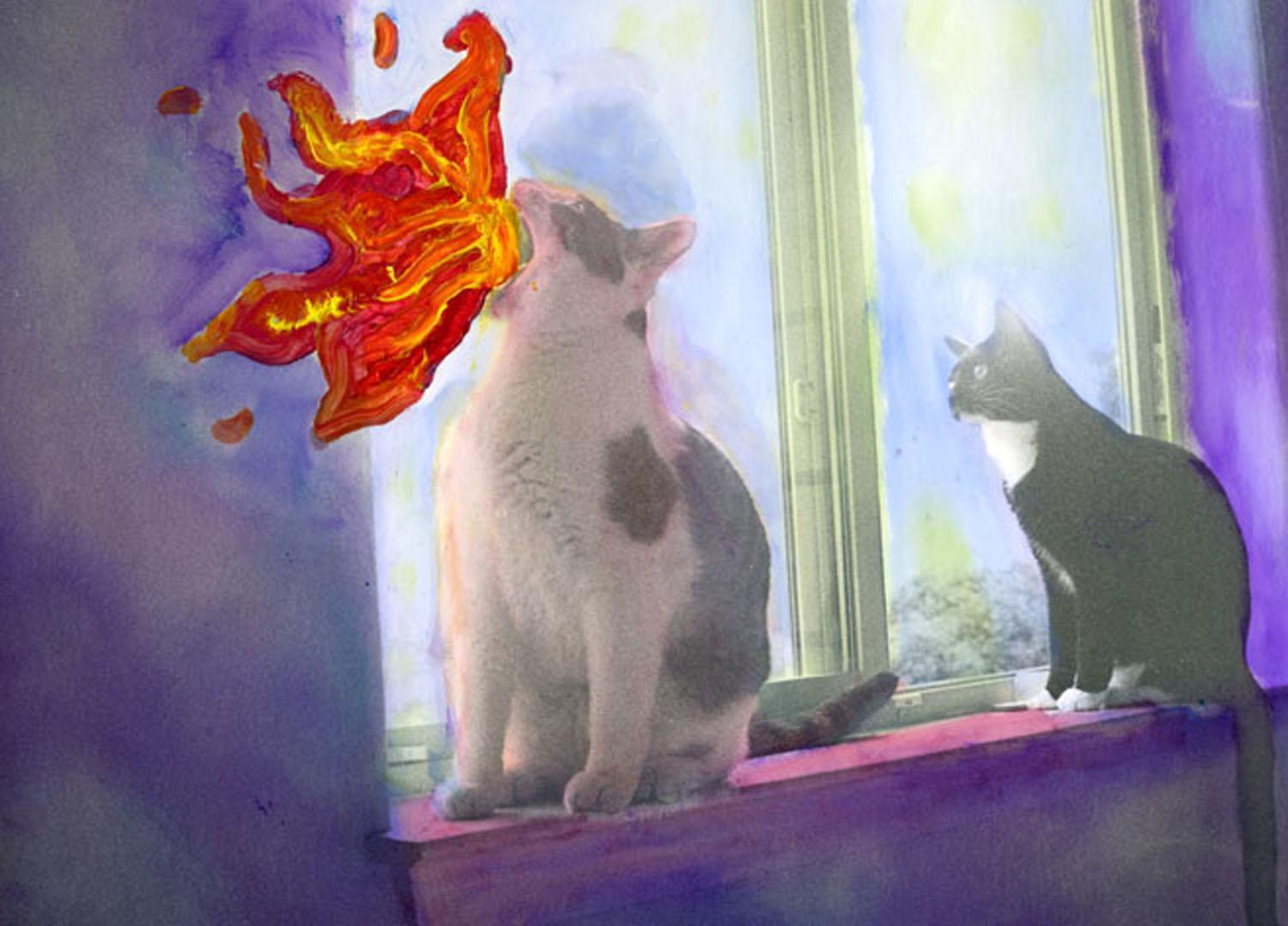 altered photo of cats