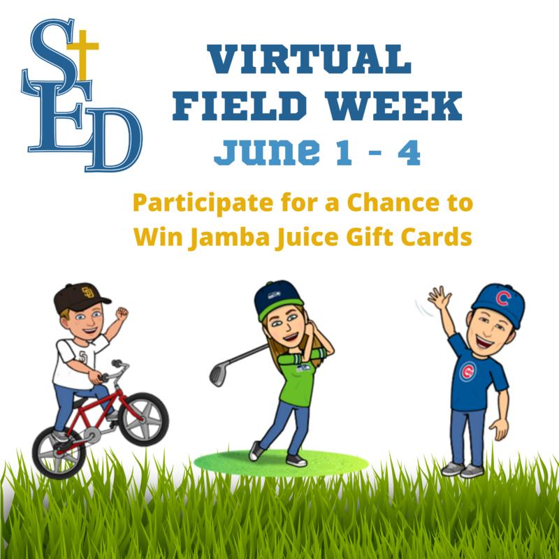 Virtual Field Week: June 1 - June 4 Featured Photo