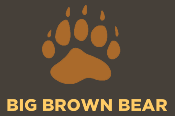 Big Brown Bear Learn to Type