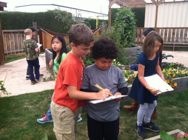 science in the garden