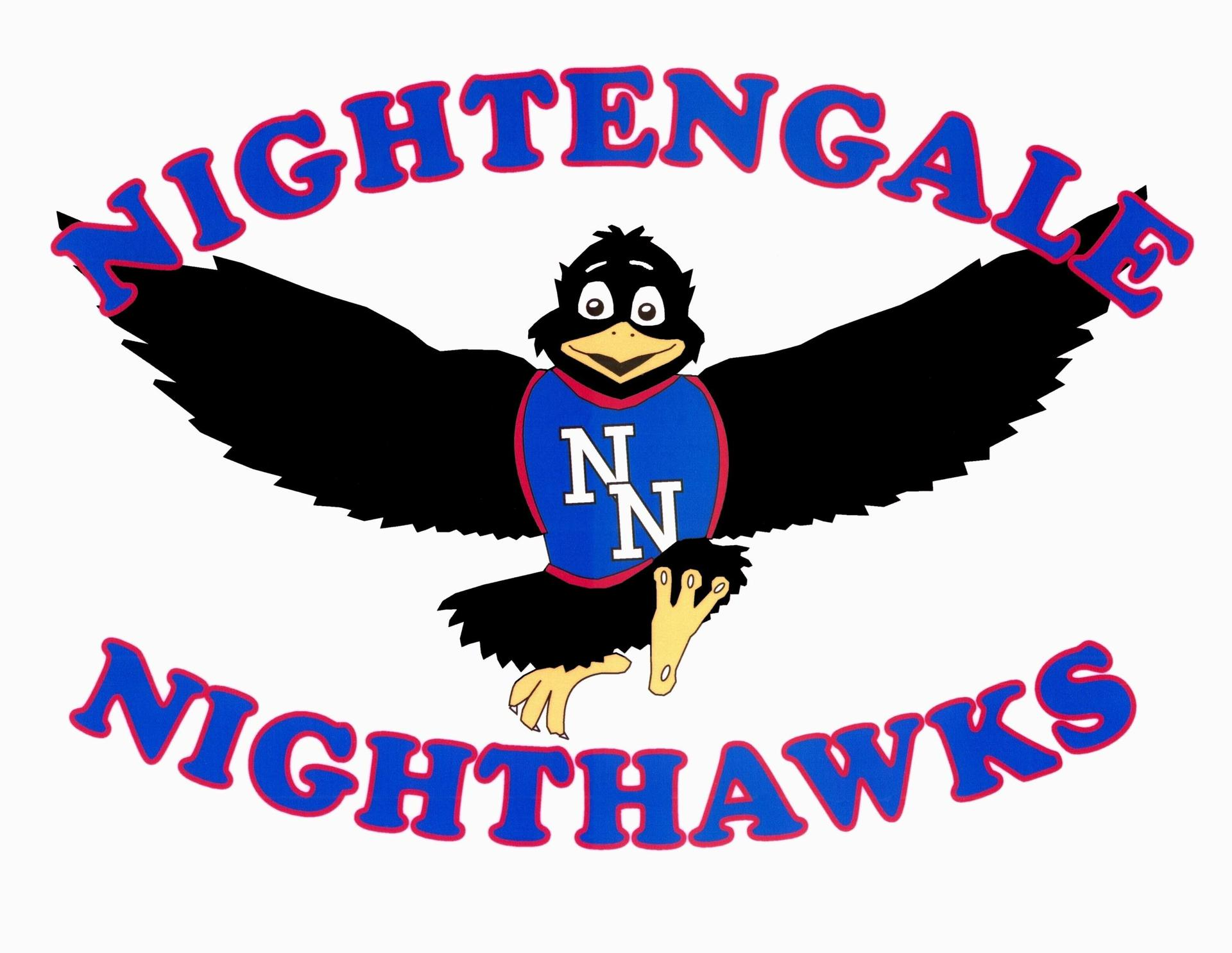Nightengale Nighthawks Logo