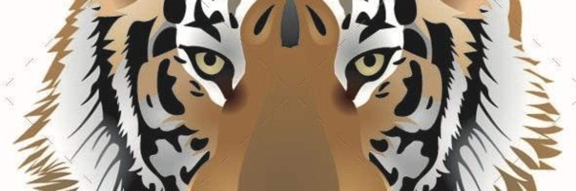 GHS Tiger