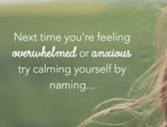 Anxiety hack
