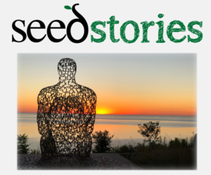seed stories logo