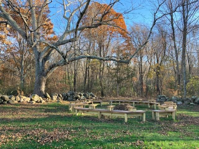 outdoor classroom under black oak tree