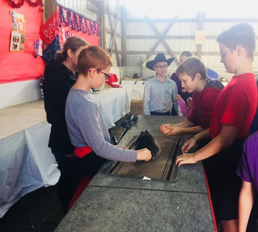 Middle School at Latah County Fair