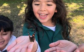 Young girl with hand out holding a colorful butterfly