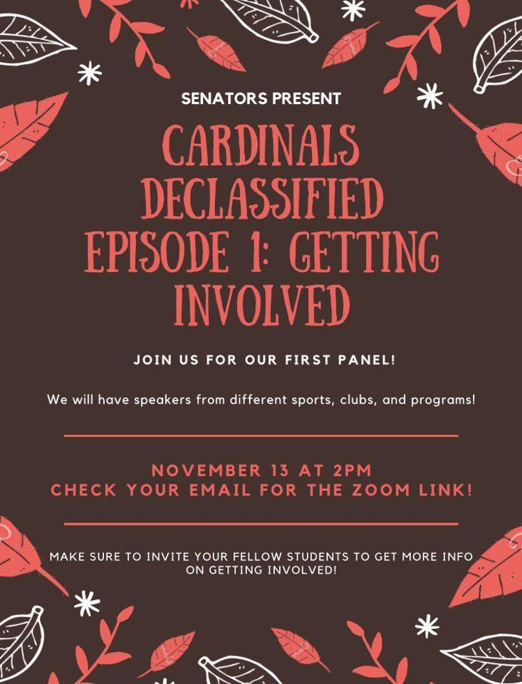 Cardinals Declassified Episode 1: Getting Involved